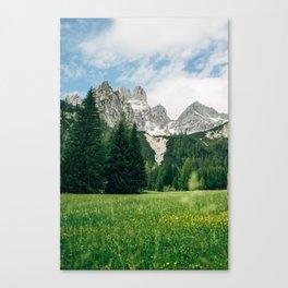 Summer Mountains Alps Austria Canvas Print
