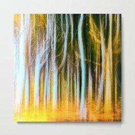 Woodland fall Metal Print