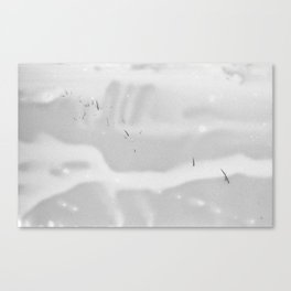Snow Etching Print Canvas Print