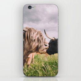 Highland Cows iPhone Skin