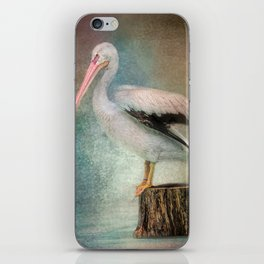 Perched Pelican iPhone Skin