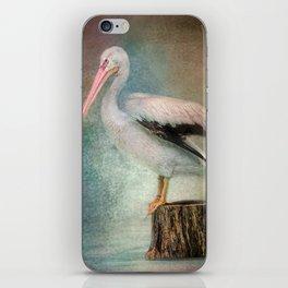 Perched Pelican iPhone Skin