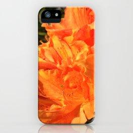 Orange Azaleas iPhone Case