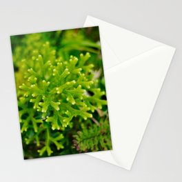 Lichen Close Up Stationery Cards