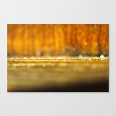 In another lonely universe Canvas Print