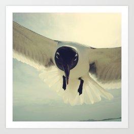 bird 1/3 by akashidan Art Print