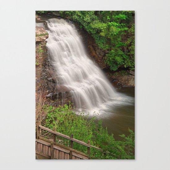 Muddy Creek Falls Canvas Print