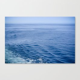 She Fell in Love on the Vast Wild Sea Canvas Print