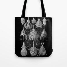 Plankton Shells (Cyrtoidea) by Ernst Haeckel Tote Bag