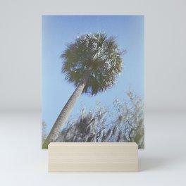 Palm Trees of the South - Savannah, Georgia - 35 mm film photograph  Mini Art Print