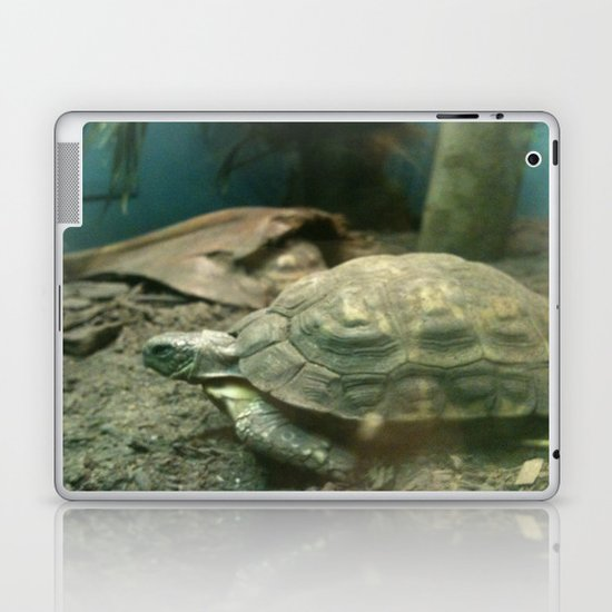 Giant Turtle Laptop & iPad Skin