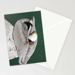 Brown Pelican at Rest Stationery Cards