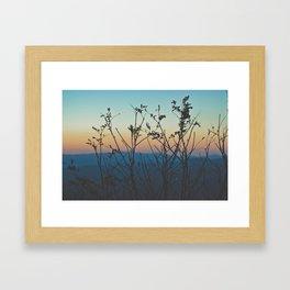 Blue Ridge Mountain Sunset (Asheville, North Carolina) Framed Art Print