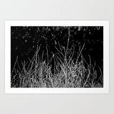SAGE SKELETON Art Print