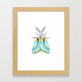 Blue Moth Framed Art Print