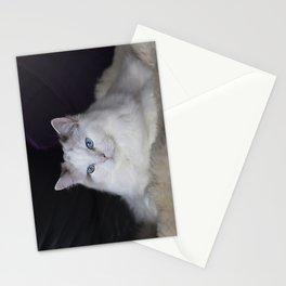 Ragdoll Cat Her Majesty Stationery Cards