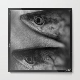 Spanish Mackerel Metal Print