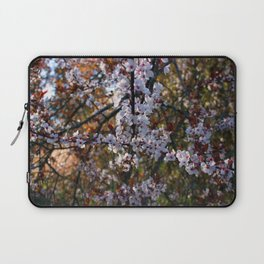 Oregon Cherry Blossoms  Laptop Sleeve