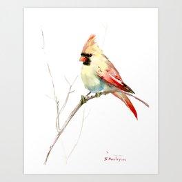 Northern Cardinal (female Cardinal bird) Art Print