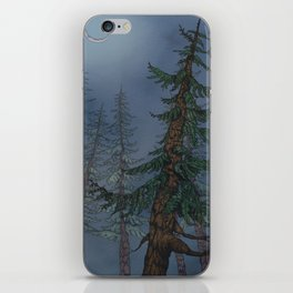 Forest Moonlight iPhone Skin