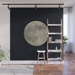 Another August Moon Wall Mural