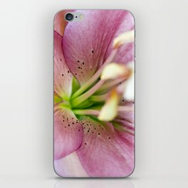 Pink Lily Flower iPhone Skin