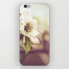 Lonely blossom iPhone & iPod Skin