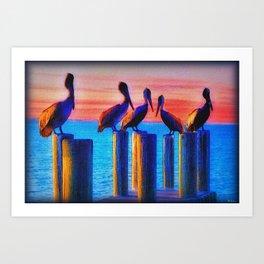 Pelicans Indian River Lagoon Florida 1 Art Print