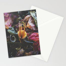 Adorn Stationery Cards