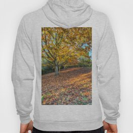 An English Autumn Hoody