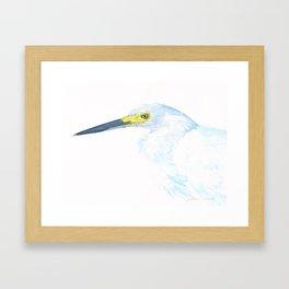 Green Eyed Heron Framed Art Print