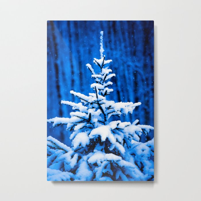 Snow covered Christmas tree Metal Print