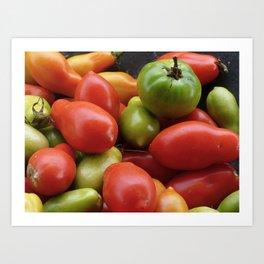 Harvest Art Print