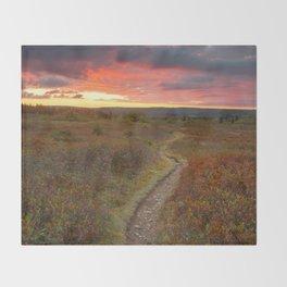 Dolly Sods Twilight Trail Throw Blanket