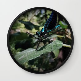 Ebony Jewelwing Wall Clock
