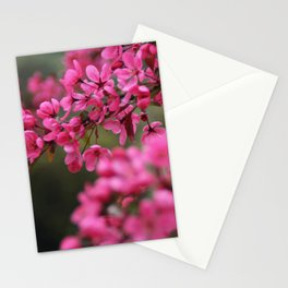 Crap Apple Blossoms Stationery Cards