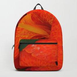 Orange Canna Lily by Teresa Thompson Backpack