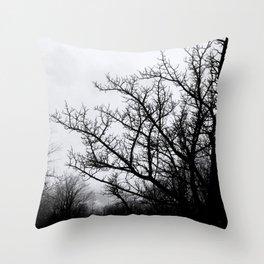 Spinne  Throw Pillow