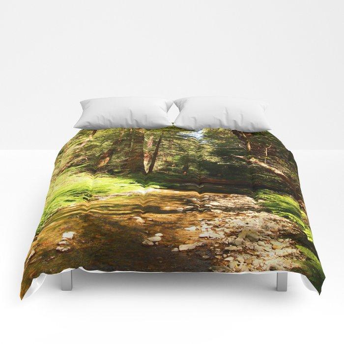 A Muir Woods Scene Comforters