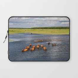 Natural bucolic view in Biebrza wetland Laptop Sleeve