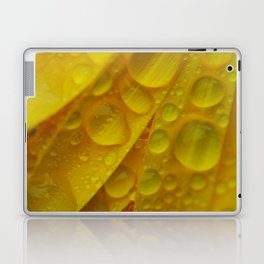 Yellow Marigold Flower Petals and Raindrops Laptop & iPad Skin