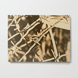Barb Wire-Lithography Metal Print