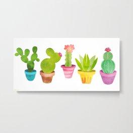 Cactus Plants In Pretty Pots Metal Print