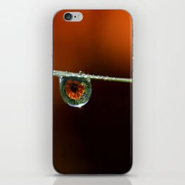 Marigolds in the rain iPhone Skin