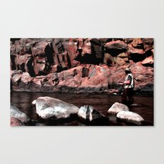 Serenity and solitude Canvas Print
