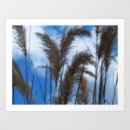 Tall Grasses Art Print