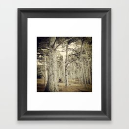 Pebble Cypress Framed Art Print