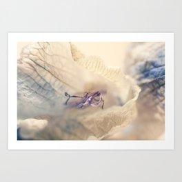 Flower 1 MacroPhotography Art Print