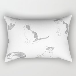 Amigo Cat 2 Rectangular Pillow