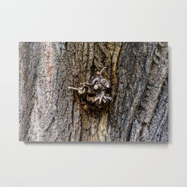 Tree bark with branch stump Metal Print